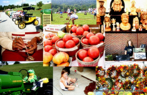 Grainger County Tomato Festival reigns as the kind of anything tomato. Join the famous tomato wars on the last Saturday of July. Oh . . . be brave and wear a white shirt.